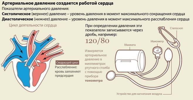 hipertónia és hipotenzió fogalma