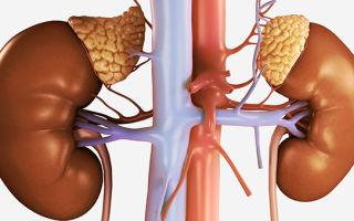 hipertónia mikrostroke